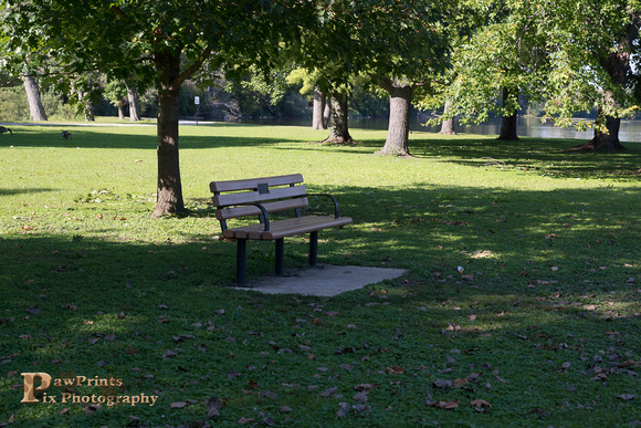 fayban park bench wood